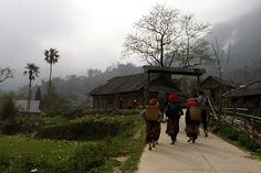 Though Sapa has long been familiar with tourists, Ta Phin Village is still a new name. Located about 17km west of Sapa, Ta Phin is a village of Black Mong and Red Dao's people who have a rich culture that has not been damaged by modern life. Ta Phin Village is located in Ta Phin …