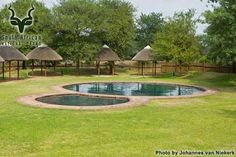 KNP - Satara - Pool