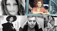 Na ekranie od 60 lat. Sophia Loren świętuje urodziny. http://www.tvn24.pl/kultura-styl,8/na-ekranie-od-60-lat-sophia-loren-swietuje-urodziny,470049.html