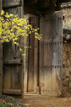 Old door - Korea. Jungle Resort, Permaculture Design, Nature View, Wonderful Picture, Entrance Gates, Architecture Old, Old Doors, Culture Travel, Doorway