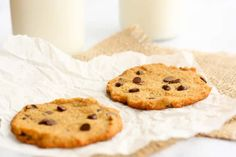 Coconut Flour Cookies are perfect for your little's lunchbox. He or she won't have to worry about any sort of allergy bans at school to enjoy a sweet cookie at lunchtime.