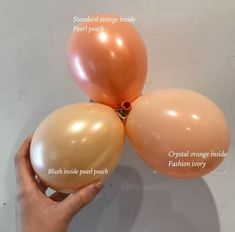 Custom colour blends are the hottest trend in the balloon industry Send Balloons, Balloons Online, Custom Balloons, Balloon Flowers, Balloon Arch, Balloon Garland, Deco Ballon, Balloon Shades, Balloons Galore