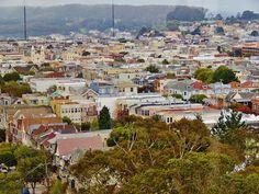 san fransisco and redwoods 368 San Fransisco, Paris Skyline, Travel, Viajes, Trips, Tourism, Traveling