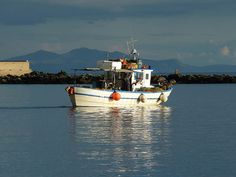 Tinos island, fisherboat leaving for the evening Beautiful Things, Greece, Island, Tea, Greece Country, Islands, Teas