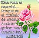 Esta rosa es especial para ti. ¡Gracias por tu amistad!