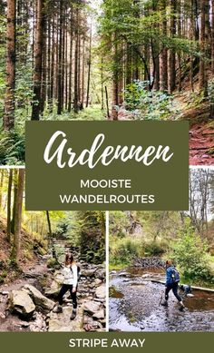 Wandelen Ardennen Places To Travel, Travel Destinations, Places To Visit, Europe Travel Guide, Travel Guides, Wonderful Places, Beautiful Places, Water Activities, Best Hikes