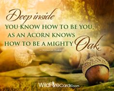"""""""Deep inside, you know how to be you –as an acorn knows how to be a mighty oak."""" –Suzanne Harrill  http://www.wildfirecards.com/page/cardview/1205"""