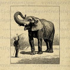 Digital Elephant Graphic Image Antique Download Printable