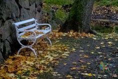 Teijon kartano | Salon Sydän -verkkokauppa esittelee Salon parhaat paikat!