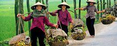 Voyages au Vietnam