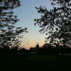 A walk in the park. #Cologne ##Rhinepark #Köln #Rheinpark #CGN...