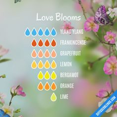 Love Blooms – Essential Oil Diffuser Blend – Pam Butler – Join in the world of pin Essential Oils Guide, Essential Oil Uses, Doterra Essential Oils, Velas Diy, Essential Oil Combinations, Essential Oil Perfume, Essential Oil Diffuser Blends, Parfum Spray, Diffuser Recipes