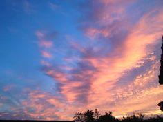Anche a Poggio al Tesoro, Bolgheri: la vendemmia è terminata. 15.10.2013 Sunset on the last day of the grape harvest.