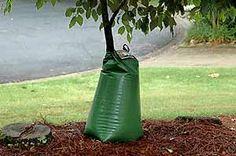 Drip Irrigation: A Smart Way to Help Plants Survive Summer