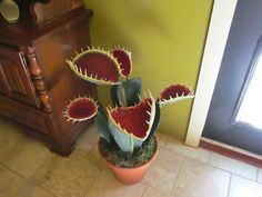 Giant Venus Fly Trap. Made of paper plates ,cardboard, wooden skewers, pcv, coat hangers and paper mache