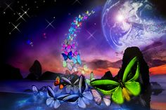 butterfly | The Wolf's Whisper and The Butterfly's Flight | Muse In The Valley
