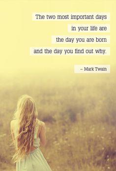 Mark Twain's quote