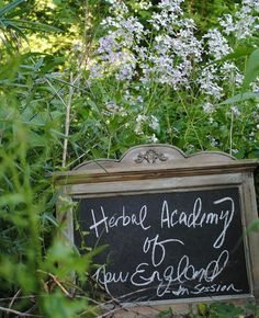 How to make teas, tinctures, health products and remedies. Introductory Herbal Class is now online!