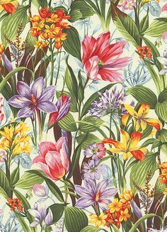 Botanical Society - Lily & Tulip Study - Ivory