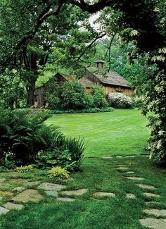 Transition between lawn and woods