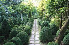 12 beautiful examples of creative cloud pruning