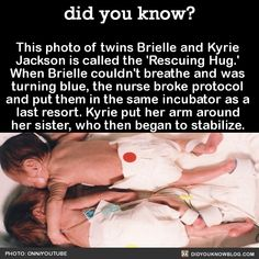 did you know? - The picture became well-known and historic,...