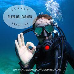 Playa del Carmen es el corazón de la Riviera Maya, una cadena de playas y lugares de interés a lo largo de la costa caribeña de México. Está cerca de maravillas culturales y naturales de la Riviera Maya. Sitios mayas increíbles como las ruinas mayas de Tulum, Cobá, y las famosas ruinas de Chichén Itzá están a poca distancia de Playa del Carmen. Maravillas naturales abundan en esta parte de México. Los visitantes pueden nadar y bucear en cenotes piscinas de agua dulce, o de las cálidas aguas…