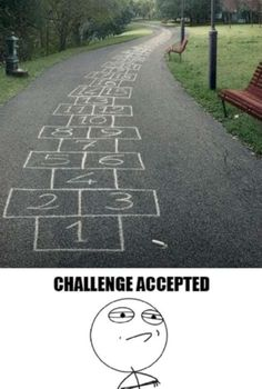 Funny Challenge Accepted Compilation (23 Pics)