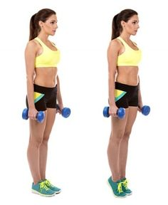 Slimming Challenge Standing Calf Raise Exercises with Dumbbells - Along with other areas of the body, calves also play main role to enhance your beauty. So do daily exercises to get slim calves with great dedication. Workout Routines For Women, Home Exercise Routines, Calf Raises Exercise, Slim Legs Workout, Slim Calves, Calf Exercises, Posture Exercises, Calf Muscles, Yoga
