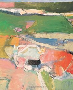 Richard Diebenkorn: The Berkeley Years, 1953-1966 (Fine Arts Museums of San Francisco): Timothy Anglin Burgard, Steven Nash, Emma Acker: 9780300190786: Amazon.com: Books