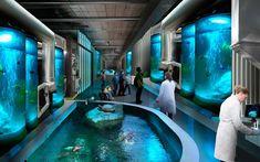 Foster + Partners inicia construcción del Museo Nacional de Ciencia y Tecnología Marina de Taiwán | Plataforma Arquitectura