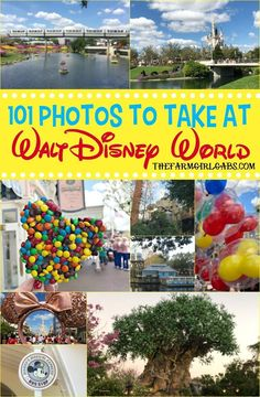 Ready for the ultimate Disney Photo Bucket List? I gathered some Disney photograph inspiration with these 101 Photos To Take At Walt Disney World. Disney Vacation Planning, Disney World Planning, Disney World Vacation, Disney Cruise, Disney Vacations, Disney Travel, Disney Parks, Vacation Ideas, Trip Planning