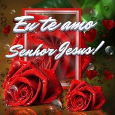 Eu te amo Senhor Jesus