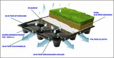 green living sod roof system