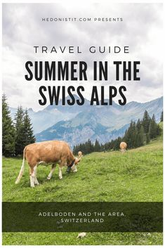 Adelboden Switzerland - a summer trip guide in the Swiss Alps #summervacationposts