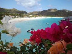 The airport on St. Barth is considered one of the most dangerous in the world and can only be served with a special license. France Travel, Journey, Island, Adventure, Mountains, World, Traveling, Group, Block Island