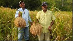 """Este 14 de junio podrás degustar rica comida en el evento """"Panamá Fusión"""" http://www.inmigrantesenpanama.com/2015/05/30/este-14-de-junio-podras-degustar-rica-comida-en-el-evento-panama-fusion/"""