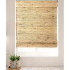 Shop Arlo Blinds Petite Rustique Bamboo Roman Shades with 60 Inch Height - On Sale - Overstock - 9984650