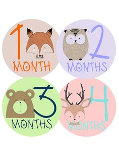 Baby Month Stickers Monthly Baby Stickers Baby от HappyPartyDecor
