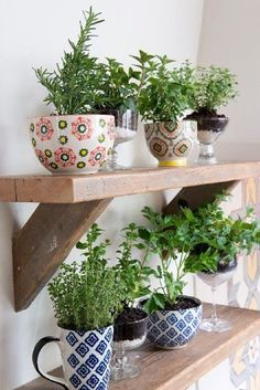 Use Cocktail Glasses and Mugs for A Stylish Way to Grow Your Herbs - 13 Peaceful DIY Indoor Garden Ideas That Brings The Outdoors In
