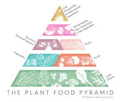 pflanzenbasierte ernährungspyramide