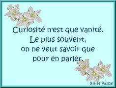 curiosité