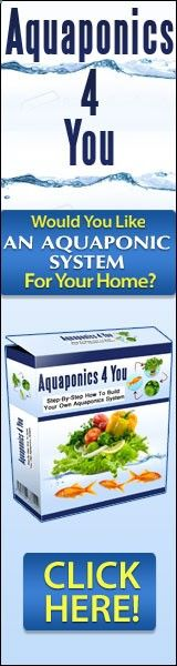 Aquaponics 4 You How to Build Bonsai Tree Care, Bonsai Tree Types, Bonsai Plants, Deciduous Trees, Aquaponics, Diy Crafts, Food, Make Your Own, Essen