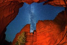 A photograph of 'Wall Street' canyon at Bryce Canyon National Park on September 20, 2011 in Utah, showing a view across our own galaxy, the Milky Way