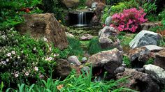Natural stone garden pond water plants waterfall