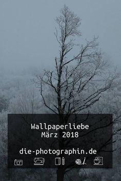 Meine Wallpaperliebe im März 2018 für euch zum Download. Sowohl eine Auswahl an schönen Desktop Wallpapern auf anderen Seiten, als auch einige meiner Fotos als Wallpaper für euch.