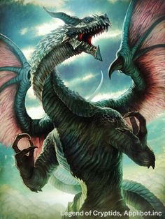 Dragon cryptids