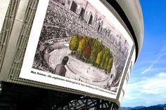 """""""FOR FOREST - The Unending Attraction of Nature"""". 🌳 • #Klagenfurt #forforest #forest #art #Wörthersee #nature #trip #Austria #stadium #travelgram Klagenfurt, Forest Art, Austria, Attraction, Places, Nature, Travel, Instagram, Naturaleza"""