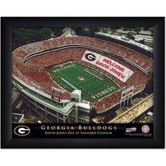 Personalized College Football Stadium Sign - Georgia Bulldogs
