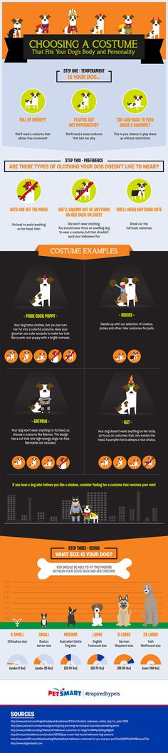 How to Choose Halloween Costumes for Dogs [by PetSmart -- via Tipsographic.com] #dogs #halloween  #tipsographic